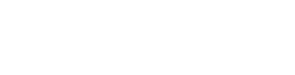 Allen Institute Website